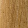 PB NB35 25 - Blond